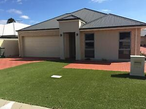 Low maintenance, as new 3x2 for rent in Ashby Ashby Wanneroo Area Preview