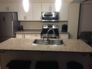 Brand new counter tops
