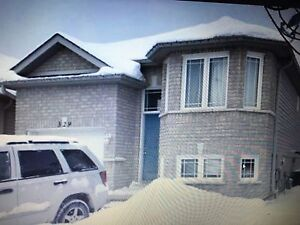 4 bedroom house for rent - walking distance to Fleming College