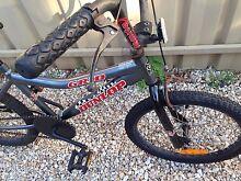 "20"" Dunlop boys Bmx bike Prospect Prospect Area Preview"