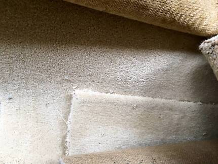 Free used Carpet for picking up! Smithfield Parramatta Area Preview