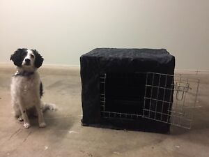 Dog Crate Metal Medium Size With Cover
