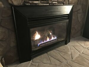 2 Natural Gas Fireplace Inserts