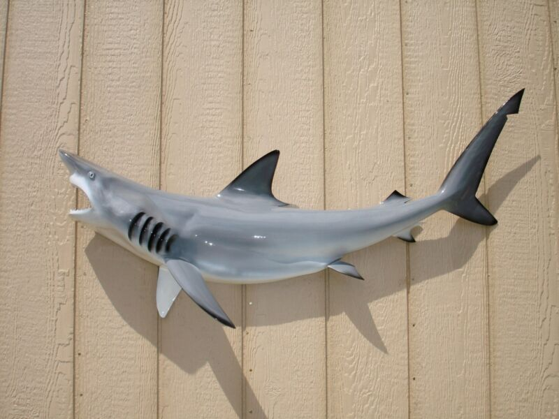 """47"""" GREY Blacktip Shark Half Mount Replica - 10 Business Day Production Time"""