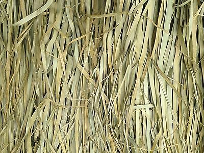 Tiki Palm Thatch Grass Bundle (5' H x 4' W - 4 sheets per bundle )