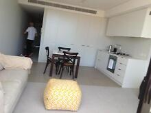 FullyFurnished New 1 Bedroom Apartment Randwick Randwick Eastern Suburbs Preview