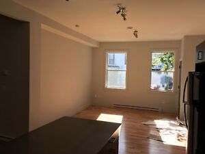 HEAT & POWER INCL PET FRIENDLY, RENOVATED SOUTH END 2 LEVEL FLAT