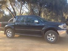 Nissan Navara ST-X D40 Toodyay Toodyay Area Preview