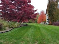 Lawn Care/ Landscaping /Hard scape