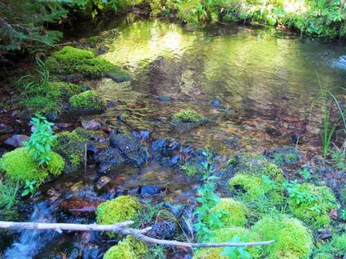 Sapphire Gem Mine Silver Montana Gold Beaver Creek Placer Mining Claim Au Ag