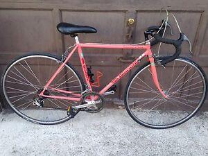 XS 48cm Bianchi Campione d'Italia road bike