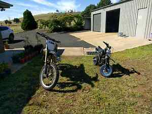 CRF250 and 125 Pit Bike Armidale Armidale City Preview