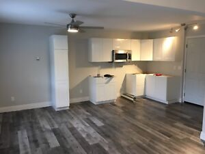 2 bedroom - 2 level apartment for rent in Port Hope
