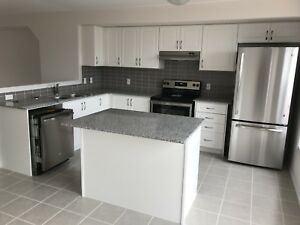 Brand new townhouse for rent (Big Bay Point and Leggott)