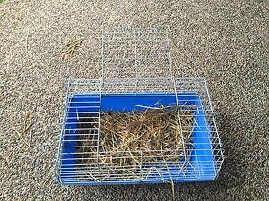 Indoor Rabbit Cage Medowie Port Stephens Area Preview