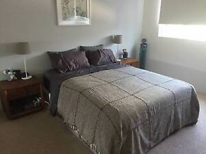 Posturepedic bed - firmness: medium - base, mattress and mattress Wollstonecraft North Sydney Area Preview