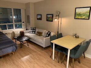 Short term furnished studio avail May 1 on TTC!