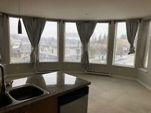 Pet friendly 2 bedroom apartment with amazing view.