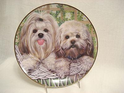 "Lhasa Apsos Dog Collector Plate Danbury Mint Patricia Bourque Darling Duo 8.25"""