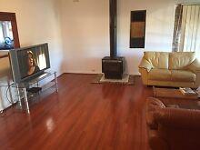 Big Room for Rent @ BLACKTOWN Blacktown Blacktown Area Preview