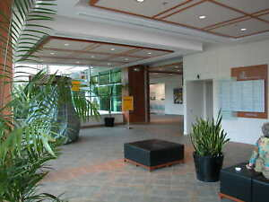 2 Private Offices, Waiting Room, w/ storage room - For Rent