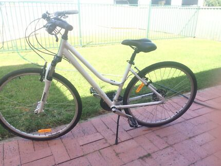 Avanti Discovery Hybrid Bike Maitland Area Preview