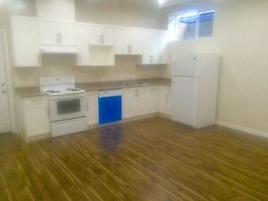 Brand  new  basement suite for rent in promontory