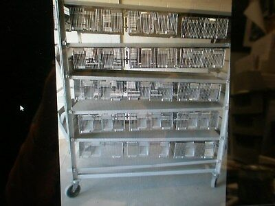 Lab Products Double Sided 30 Cage Rodent Rack 72 X 28 X 68 High