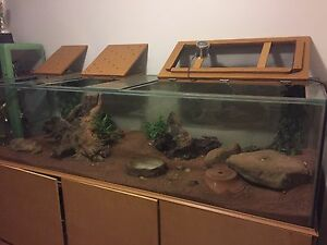 7ft aquarium and accessories Bullsbrook Swan Area Preview