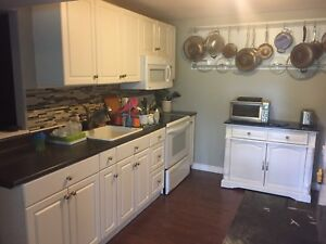 Beautiful 2 Bedroom Apt Available Aug 1  2018