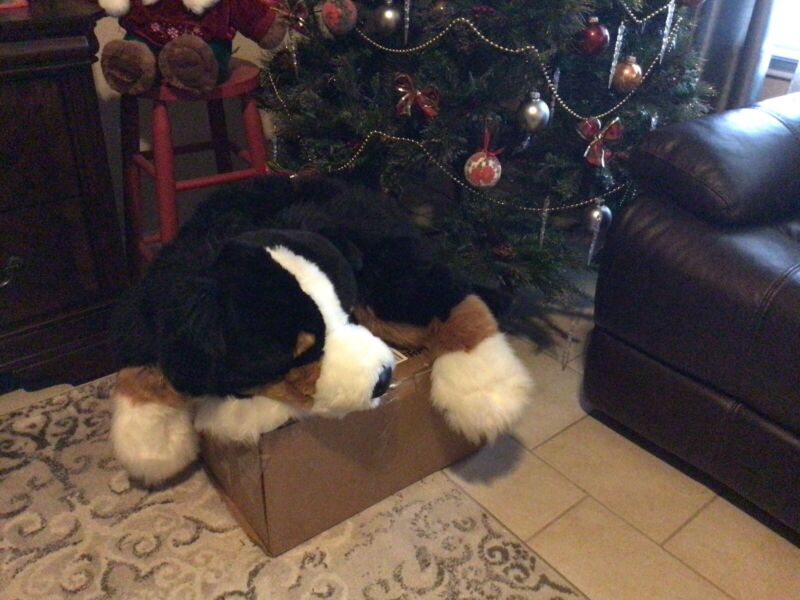"Rare Large 40"" Realistic Floppy Plush Soft Furry Bernese Mountain Dog"