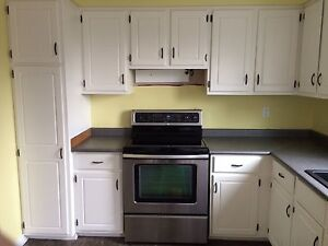Stainless electric range. Warranty included.