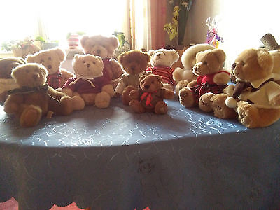 Douglas Teddybären, alle unbespielt