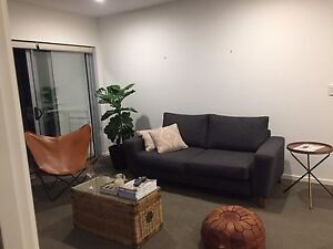 Flatmate needed 5th Feb! Taringa Brisbane South West Preview