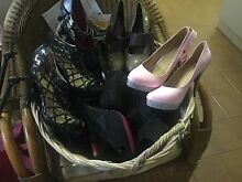 ladies new dozens of high fashion shoes most new size 11au Trinity Park Cairns Area Preview