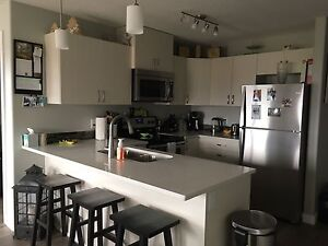 Apartment for rent  stony plain SD already paid