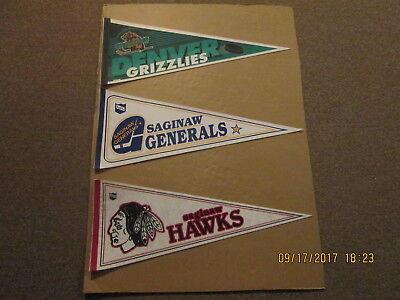 IHL Denver Grizzlies Saginaw Generals & Sagiinaw Hawks Vintage Lot of 3 Pennants