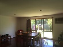 Huge double story house for rent! Cheap! Great location! Mill Park Whittlesea Area Preview