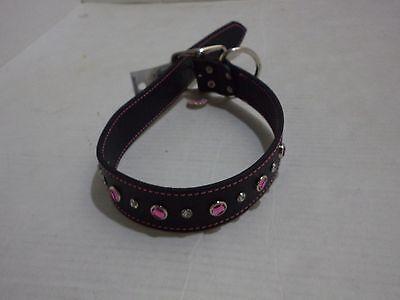 Petco Pink Jewel Leather Dog collar, For Neck Sizes 18-24, Size Large/Extra Larg