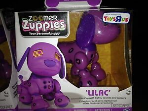 "ZOOMER ZUPPIES ""LILAC"" (1 AVAILABLE)"