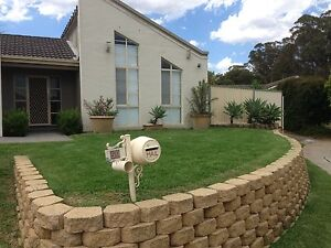 Lawn mowing service from $60* Willmot Blacktown Area Preview