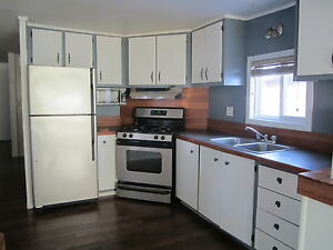 **NEW** Well kept mobile on rented lot! Strathcona County Edmonton Area image 6