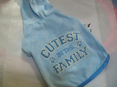CUTEST IN THE FAMILY Blue Velour Hoodie Shirt dog pet Wag a tude petco XXS XS