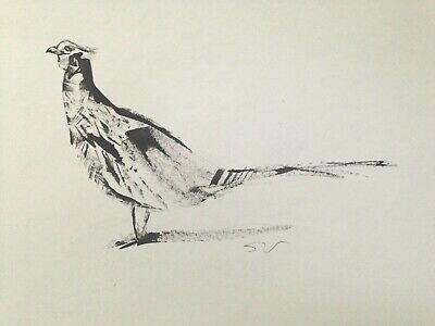 Original signed Ink sketch painting of a Pheasant approx.A3