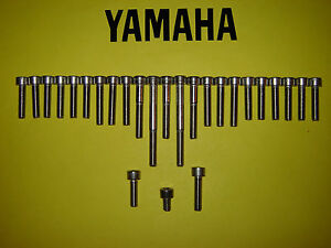 Yamaha XT250 XT 250cc Stainless SS Engine Cover Cap Allen Screw Kit