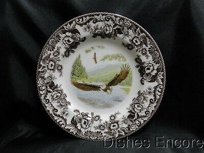 Spode Woodland Birds of Prey Spring Bald Eagle: Dinner Plate, 10 3/4