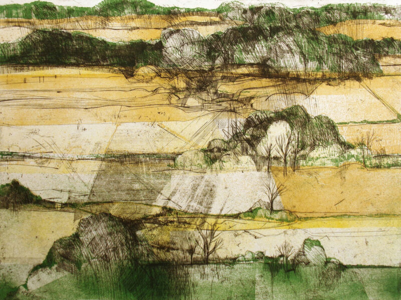 "Bill Ellingson ""mississippi Flatlands"" Hand Signed Limited Edition Art Etching"