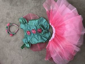 Rose Halloween costume, size 2-4