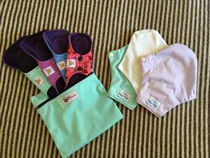 Wanted: Women's baby beehinds eco pads and mini wet bag