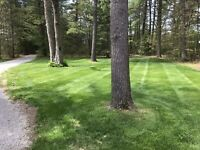 LAWN CARE SPRING CLEAN UP Fully Insured